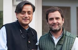 <p>Shashi Tharoor, Rahul Gandhi</p>