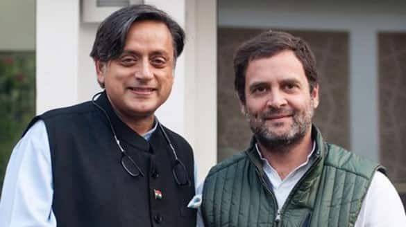 congress need permanent president says MP shashi tharoor