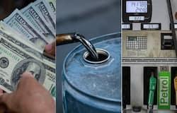 <p>oil price</p>