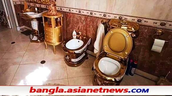 Golden toilet, kitchen, halls found in cop's lavish mansion during corruption probe ALB