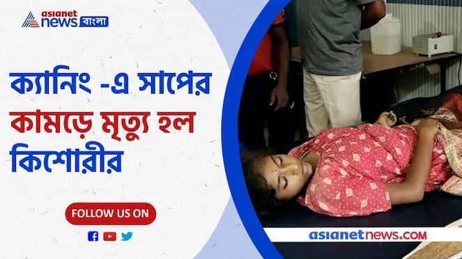 Girl dies in Canning after poisonous snake bite Pnb