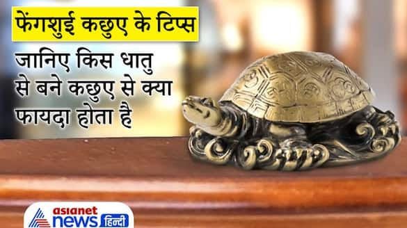 Know which metal feng shui tortoise gives what benefit KPI