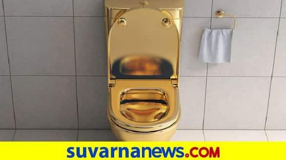 Gold toilet found in Russian cop lavish mansion during bribery probe pod
