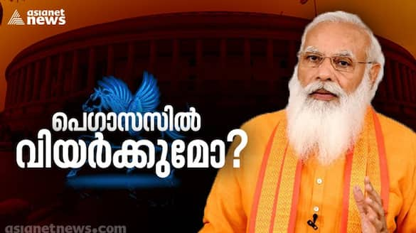 Pegasus controversy pm modi advices mps not to fall for opposition provocation