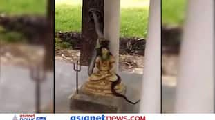 फन फैलाए भगवान शिव से लिपटा दिखा नाग, वीडियो देख लोग बोले- जय भोलेनाथ