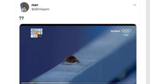 Tokyo Olympics cameraman records a cockroach during match