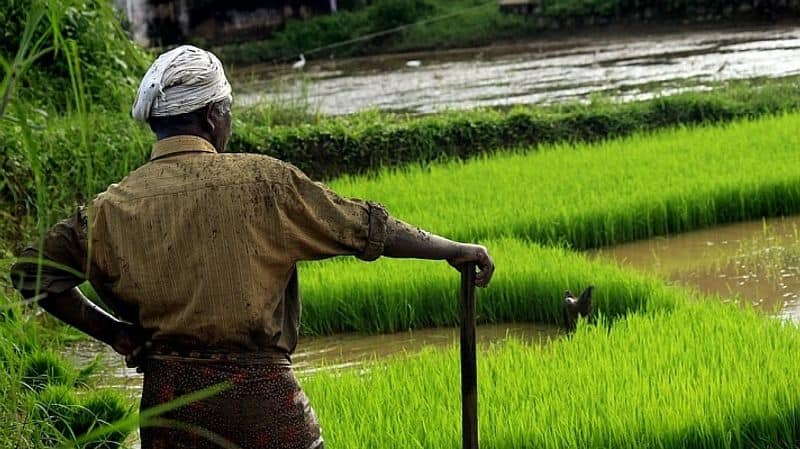 Agricultural products exported every minute $79,545