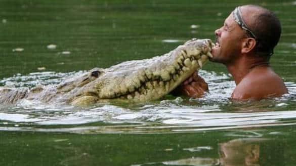 friendship of a man and a crocodile