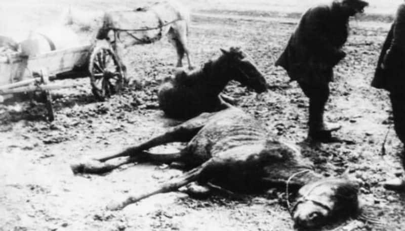 Ukrainian Famine aka Holodomor