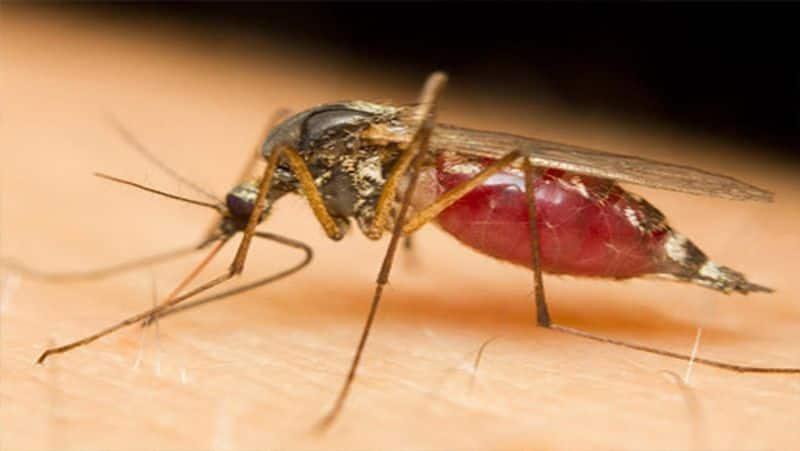 Corona infection like polio is not yet gone... Health Secretary Radhakrishnan
