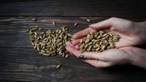 spices board will conduct 75,000 kilo cardamom e auction