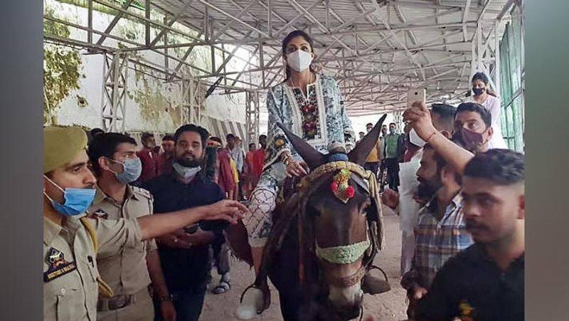 shilpa shetty went to Vaishno Devi to pray for raj kundra bjc