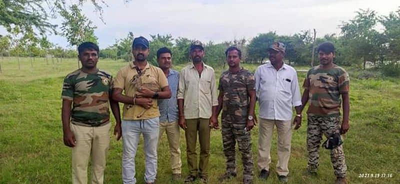 Protection of the Blackbuck Cub at Hagaribommanahalli in Vijayanagara grg