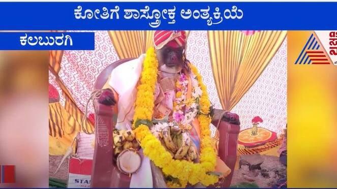 Monkey cremated traditionally in Kalaburagi District mah