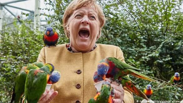 Angela Merkel visited a bird park, where a Australian rainbow lorikeet bit her: photos