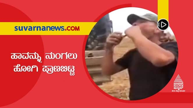 Man died while swallowing snake in Russia, viral goes viral dpl