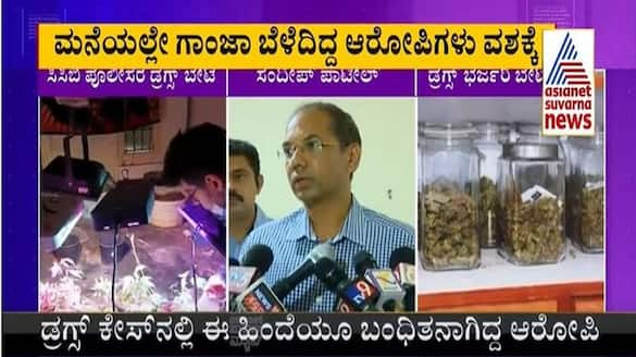 Four including two foreign citizens arrested by CCB Police for growing ganja mah