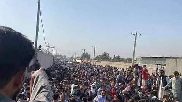 teachers went protest demanding salaries against taliban in afghanistan