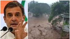 Please stay safe and follow all safety precautions; Rahul Gandhi on Kerala Rain
