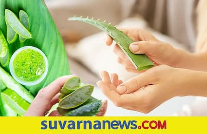 Do not take aloe Vera if you have these health problems