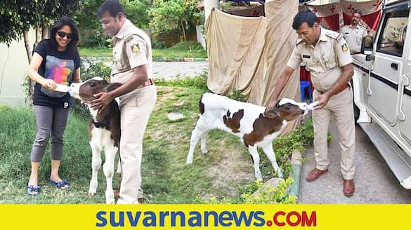 Heart Attack cow Lover Bengaluru Police Officer died mah