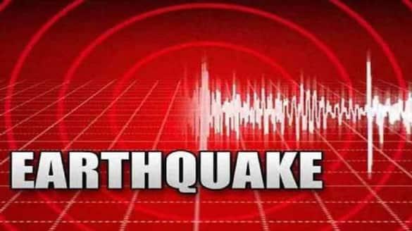 4.3 Magnitude Earthquake Strikes Near Himachal Pradesh Manali