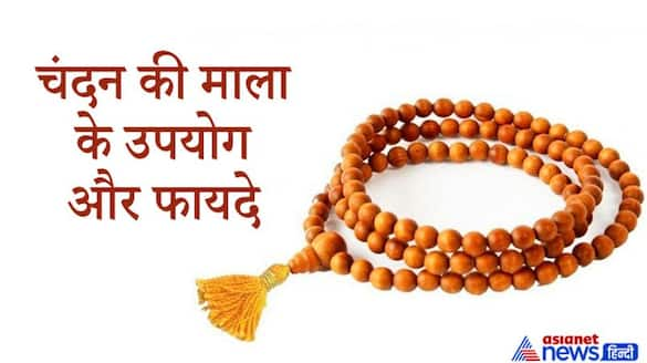 Astrology know the benefits and uses of sandalwood garland