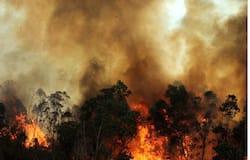 Utharakhand Forest Fire